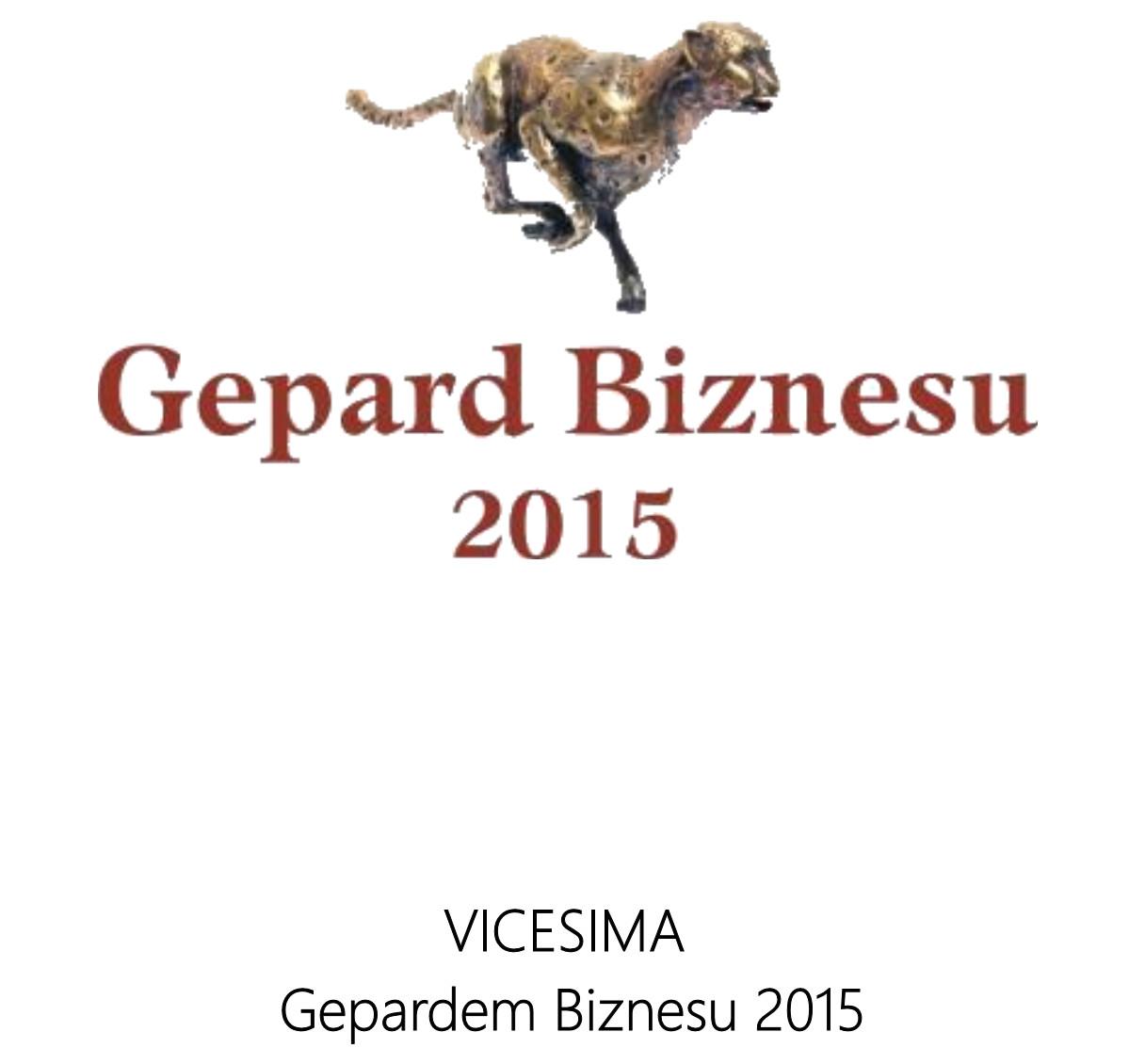 Gepard Biznesu