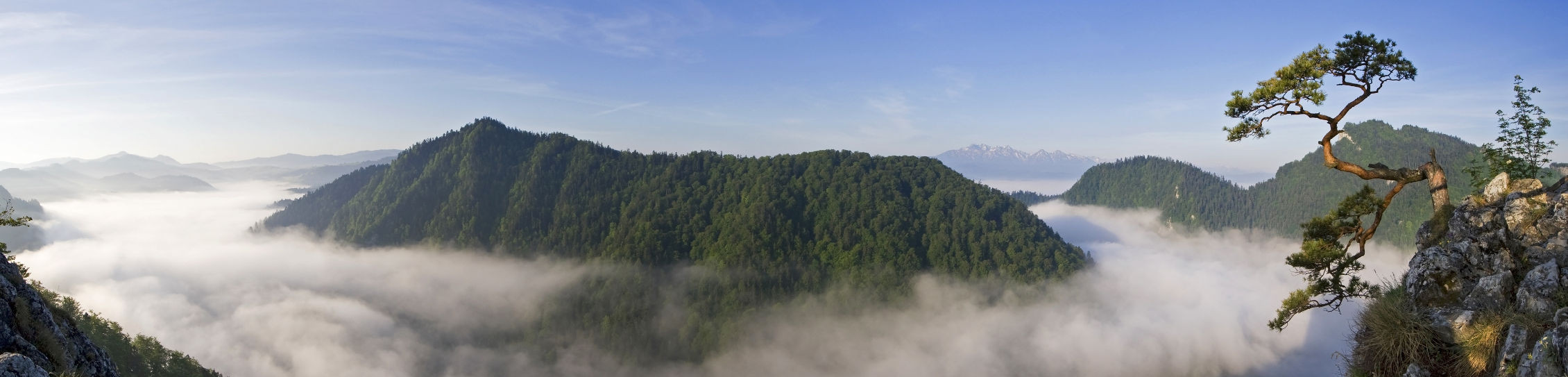 Ochrona przyrody – Natura 2000